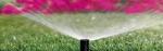 Mimoza Peyzaj Mimarlığı