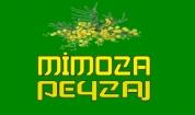 Mimoza Peyzaj